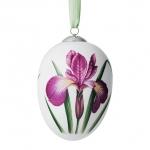 Easter Egg Iris 1019872 ВЕЛИКДЕНСКО ЯЙЦЕ